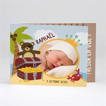 Faire-part naissance réf.N51101