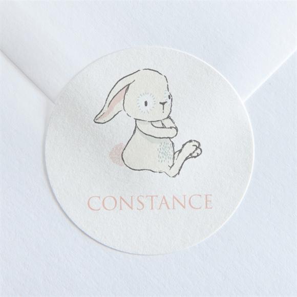 Sticker baptême Petit Lapin Bapteme réf.N360145